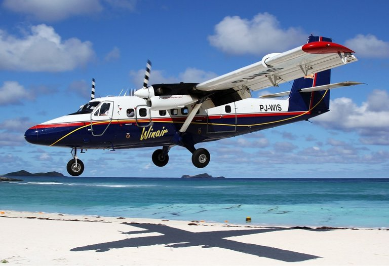 DHC6 Twin Otter.jpg