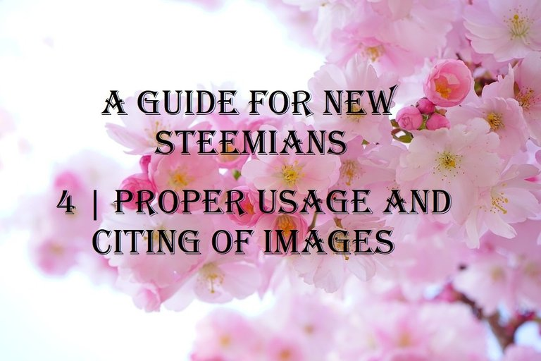 a guide for new steemians 4 proper usage and citing of images.jpg