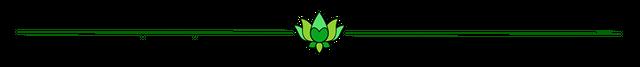 Lotus divider.png