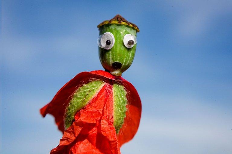 Poppy Puppet #GooglyEyes portrait close-up macro title image by @fraenk