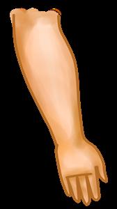 brazo - peq.png