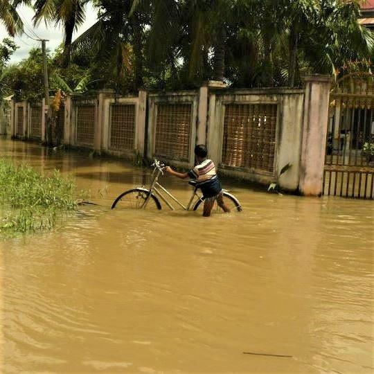 Bicycle Flood.jpg