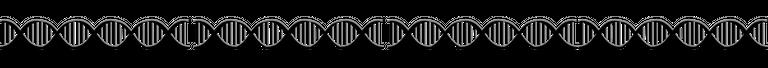 SEPARADOR ADN.png
