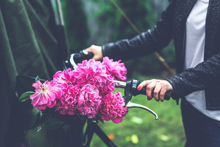 Ride a bike to save money.jpg