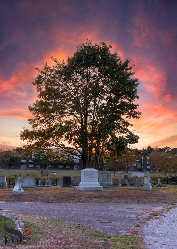 WW Evening walks in Cemetery_.jpg