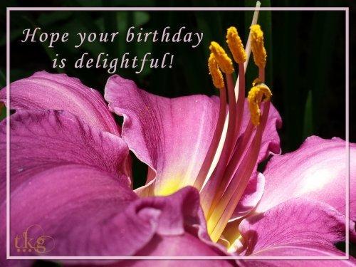 Birthday2014DelightfulTKG.jpg