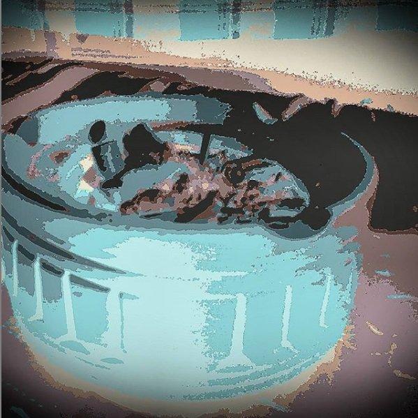 New Bitmap Image.jpg