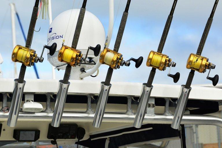 fishing-1227449_1920.jpg