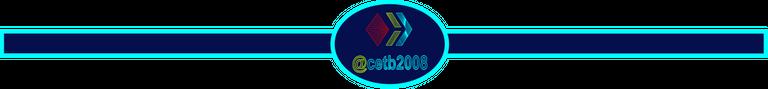 cetb2008-separador01.png