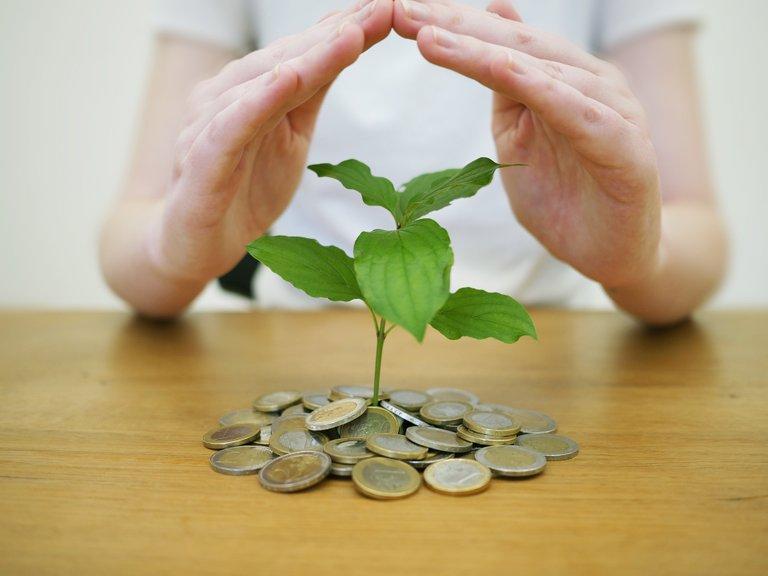 money-back-up-4518407_1920.jpg