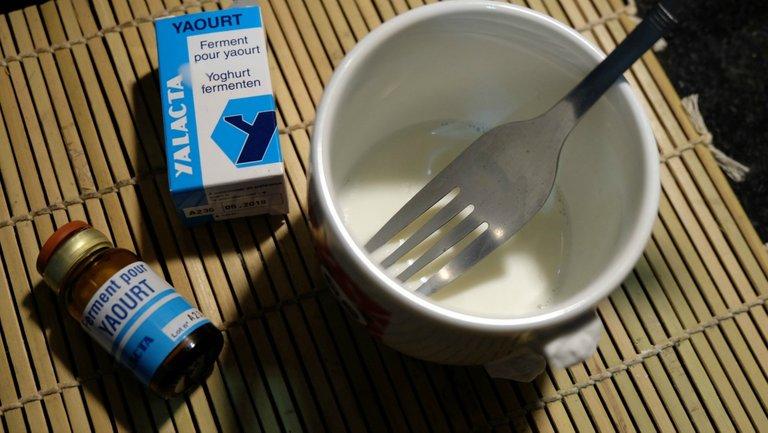 homemade-cultured-yogurt-2.jpg