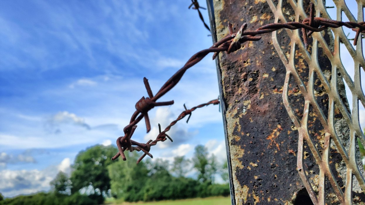 Barbed wire survided the ages.