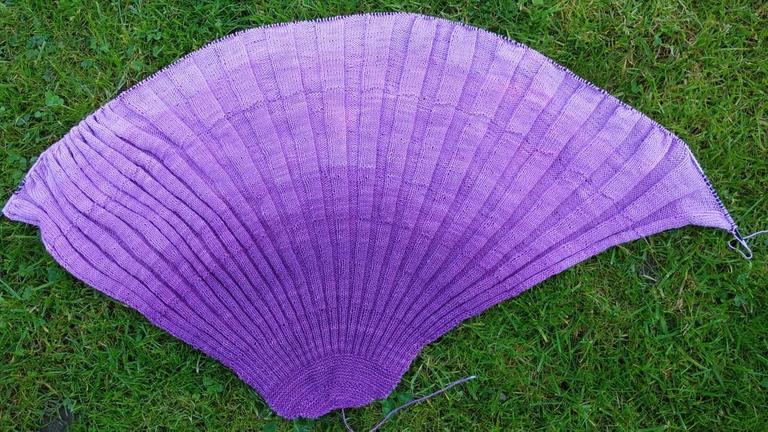Seashell on the lawn / Muschel auf dem Rasen
