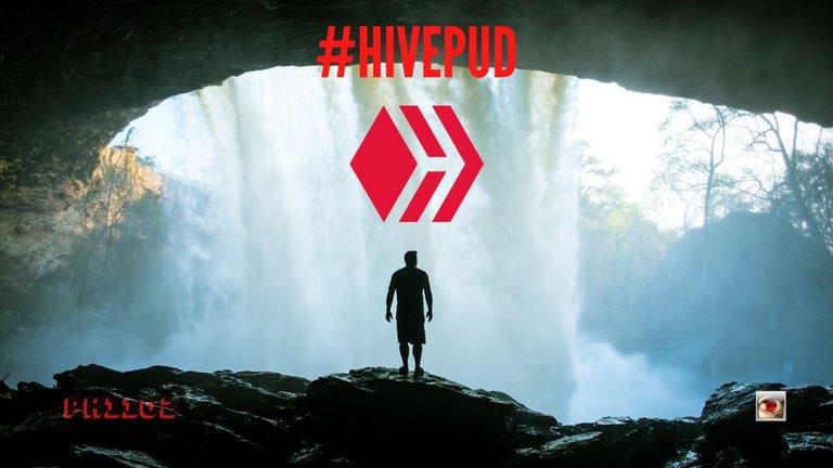 HivePUD.jpg