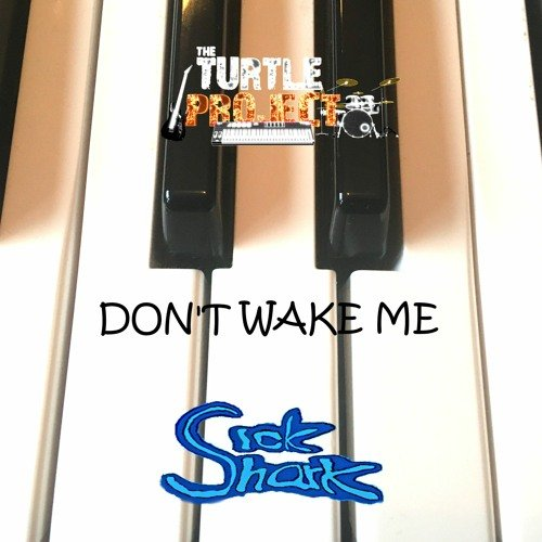Don`t Wake Me (feat. The Turtle Project) (Piano mix) by Sick Shark