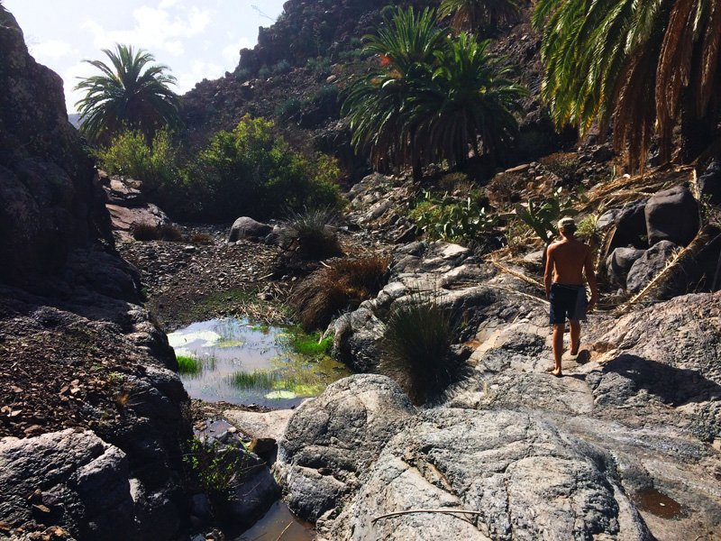 Hiking down the canyon along water pools and orchards. Valle Gran Rey, La Gomera