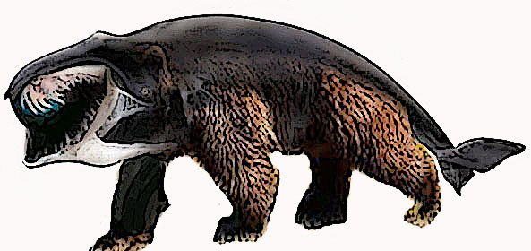 Bear Whale for Steemit poster.jpg