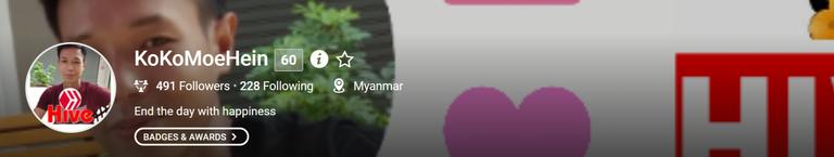 myanmarkoko.png