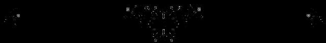 rsz_—pngtree—beautiful_black_dividing_line_4748375.png