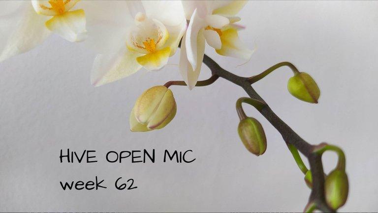 Hive Open Mic(4).jpg