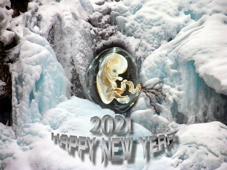 SH109401pssmallbaby in icehappy new year2021.jpg