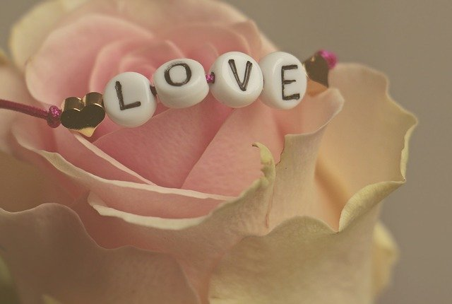 love-3388626_640.jpg