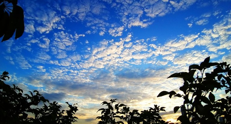 clouds_sunsets_and_beaches_kohsamui99_064.jpg