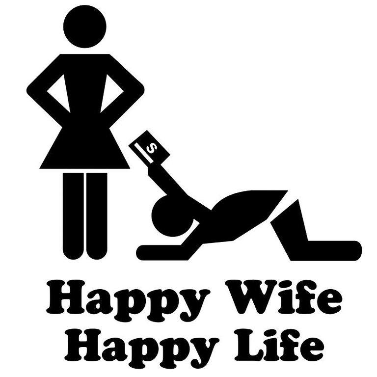 15_13_8cm_happy_wife_happy_life_vinyl_car.jpg