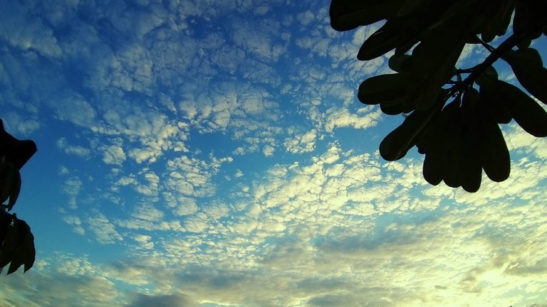 clouds_sunsets_and_beaches_kohsamui99_063.jpg