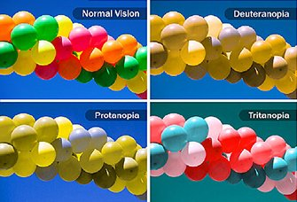 335x228_what_is_color_blindness_ref_guide.jpg