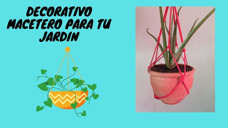 Decorativo macetero para tu jardin.jpg