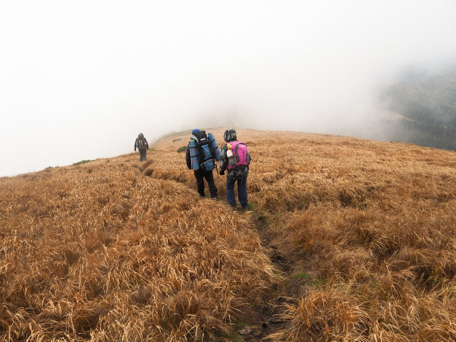 Through the fog along the ridge
