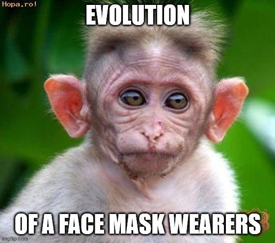 Evolution49nuke.jpg