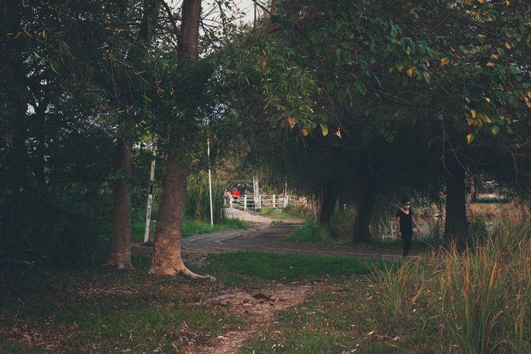 street_park3.JPG