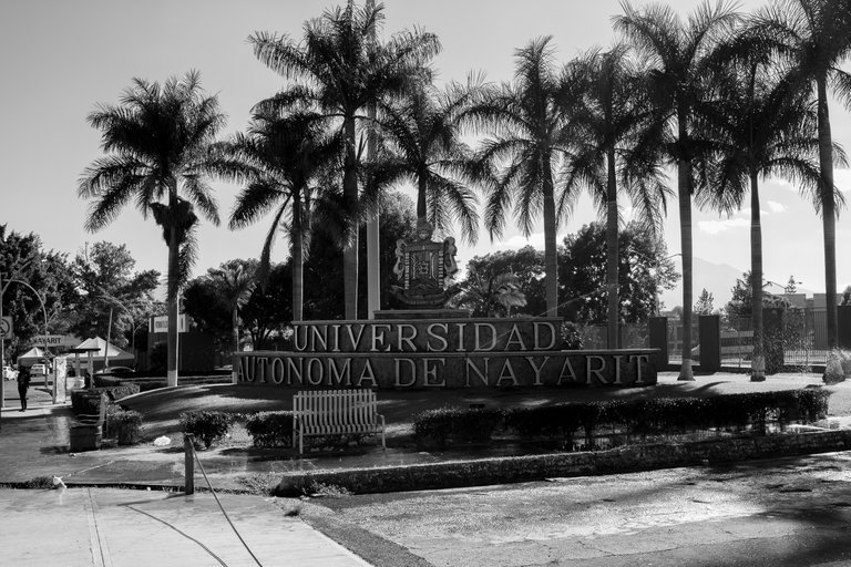 Universidad2.JPG