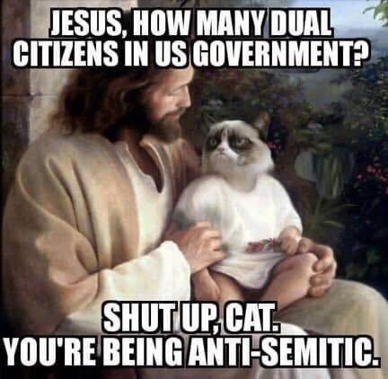 Antisemite cat.jpg