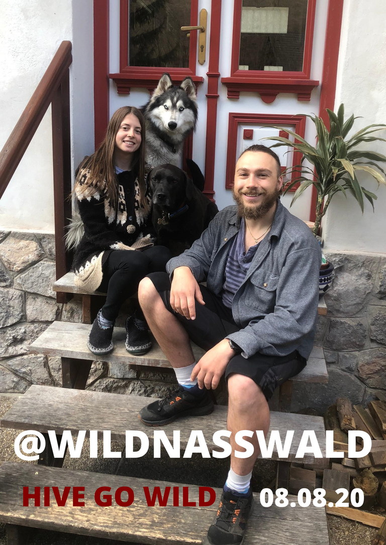 WILDNASSWALD.png