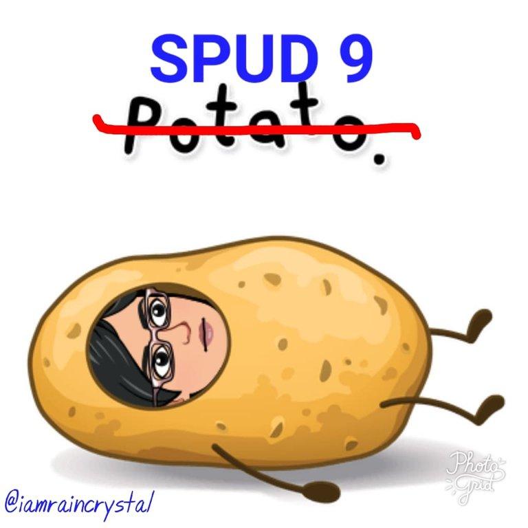 SPUD 9.jpg