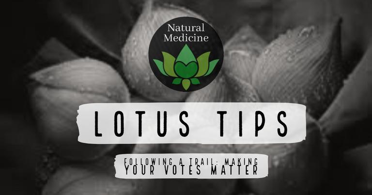 Lotus Tips.png