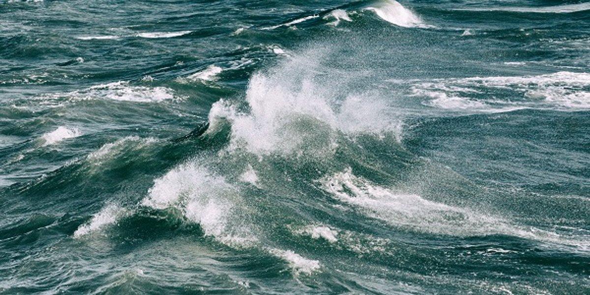 World War Waves! Atlantic wall NFT series!