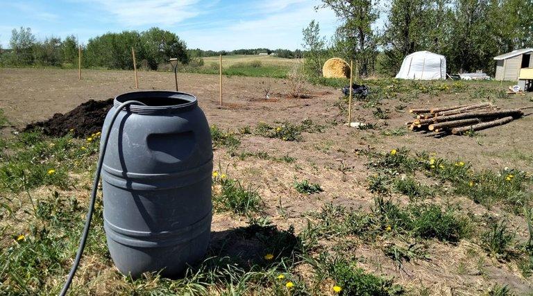 water barrel.JPG