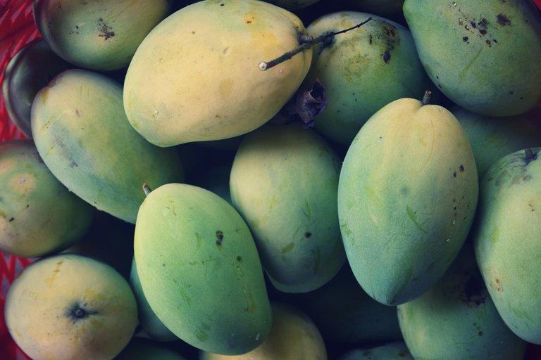 mango-4.jpg
