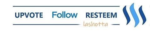 follow1.jpg