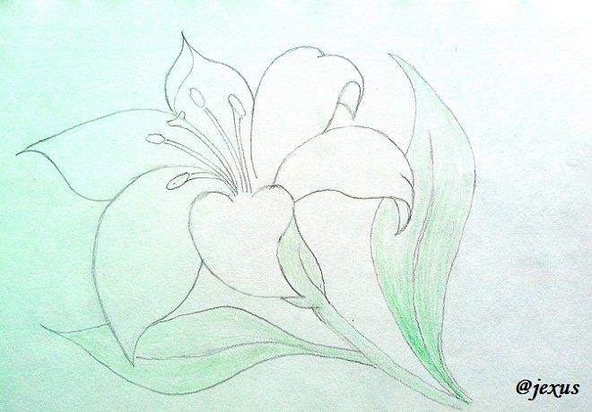 05-Flor.jpg