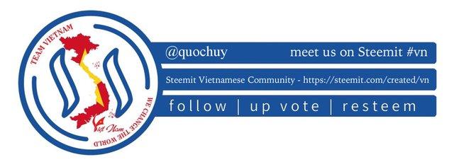 Team Vietnam banner