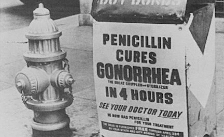 penicillin lrg stmu media.jpg
