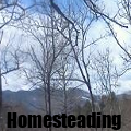 homesteading120x120.png