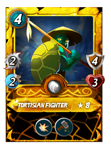 TortisianFighter.PNG