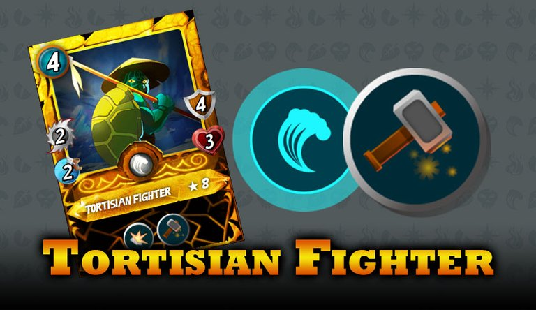 TortisianFighter.jpg