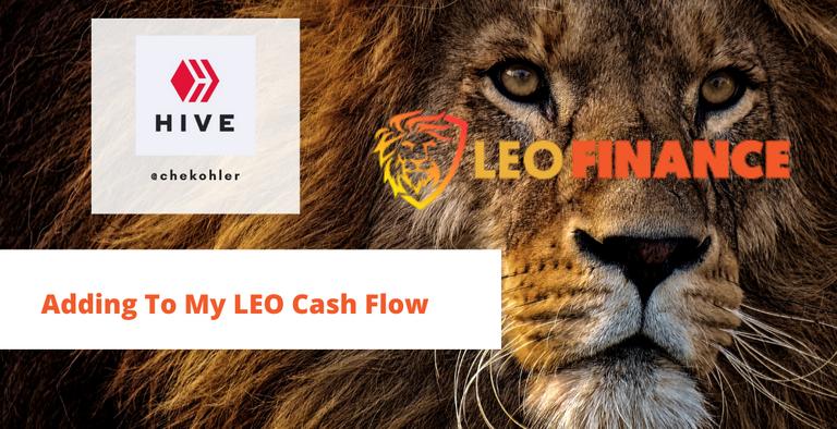 LEO cash flow.png